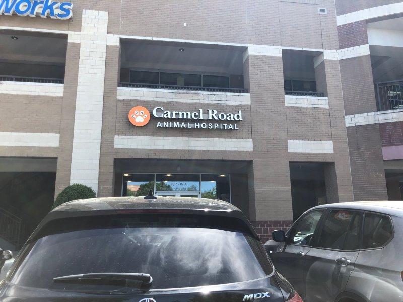 Channel Letter Sign - Carmel Road Animal Hospital
